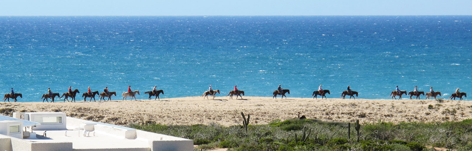 Horseback Riding & Yoga Retreat in Mexico: Beach Ride with Ocean View