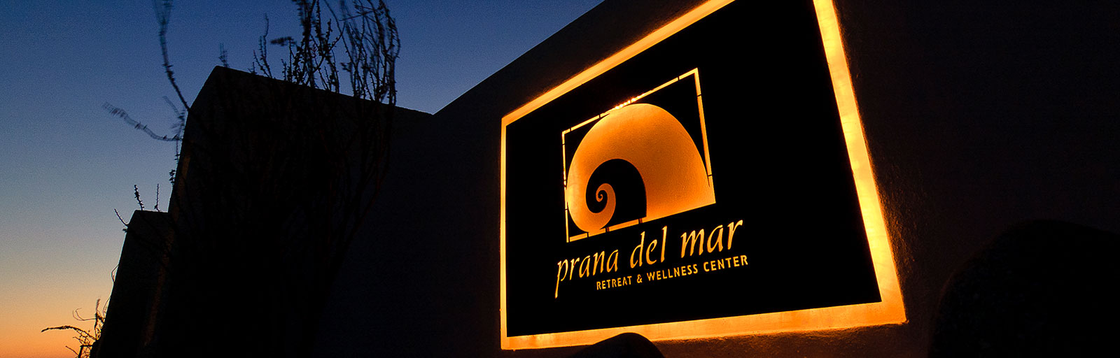 Yoga & Wellness Retreats in Mexico: Welcome to Prana del Mar
