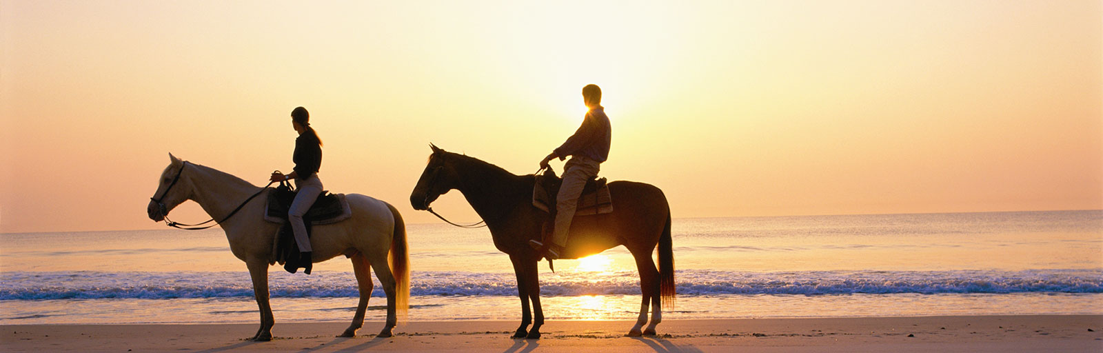 Horseback Riding & Yoga Retreat in Mexico: Sunset on the Beach